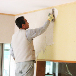 左官屋さんの手から生まれる塗り壁仕上げ、類稀れな消臭機能の『シラス壁』