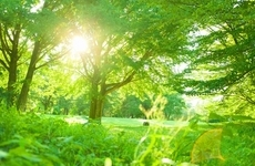 ZEHとは?かしこく光熱費を下げて地球環境にも貢献できる!の画像
